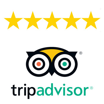 best san fransisco tour tripadvisor